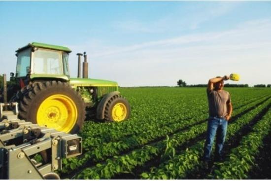 Помічник фермера